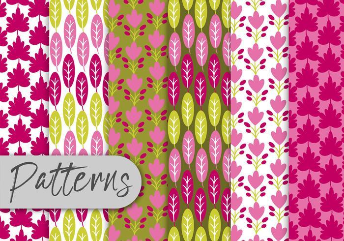 Colorful Leaf Pattern Set vector
