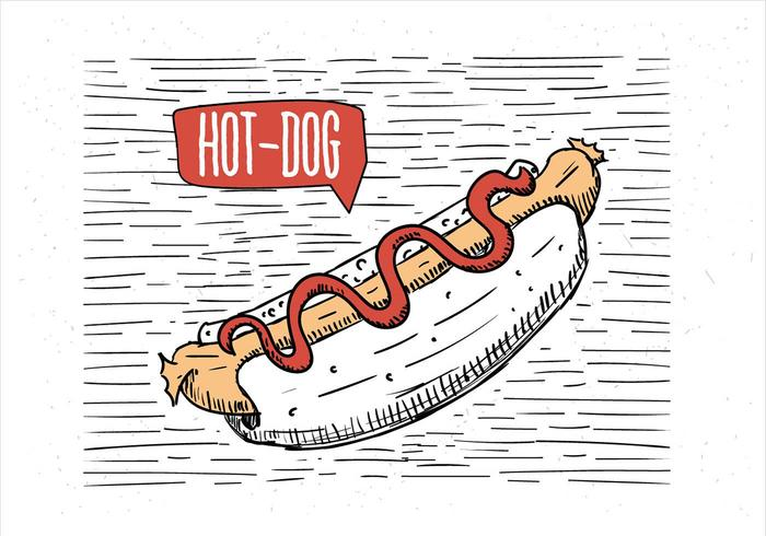 Vrije Hand getekende Vector Hot Dog Illustratie