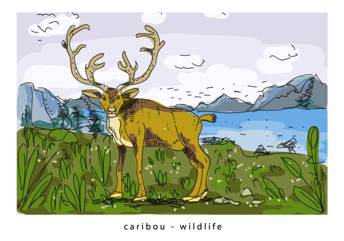 Brown Wild Caribou Background Hand Drawn Illustration
