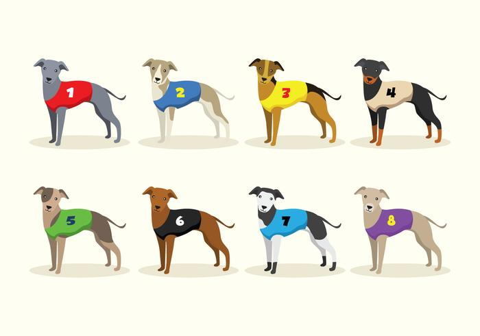Racing Whippet Dog Vectors