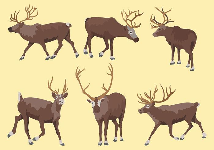 Caribou Vector Icons