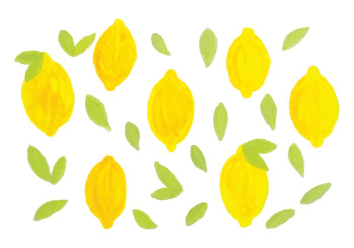 Vector Hand Drawn Lemons