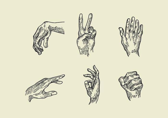 Hand Gravure Vektoren