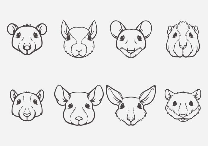 Rodent Head Vector