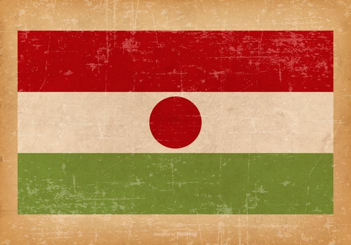 Grunge Flag of Niger
