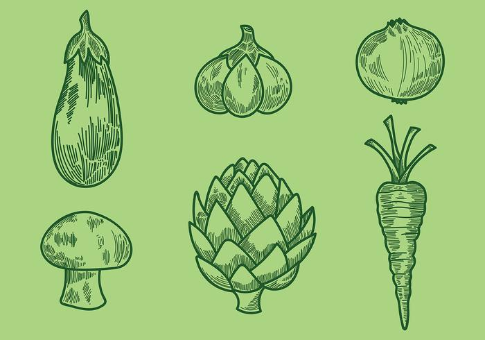 Gravure Old Style Vegetable Vector Icons