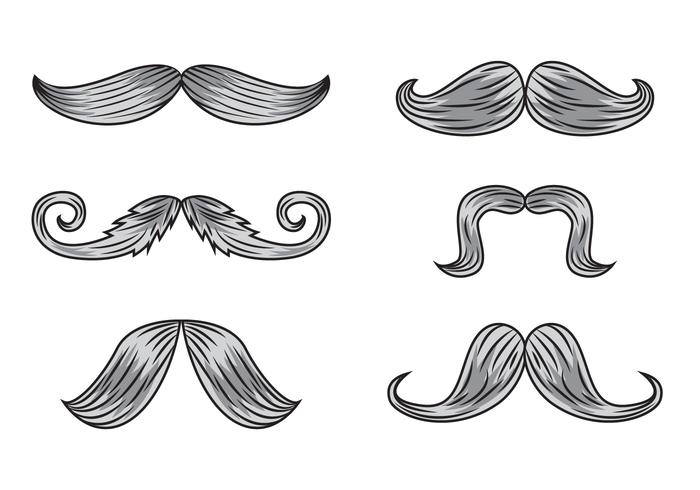 Gravure Mustache Vectors