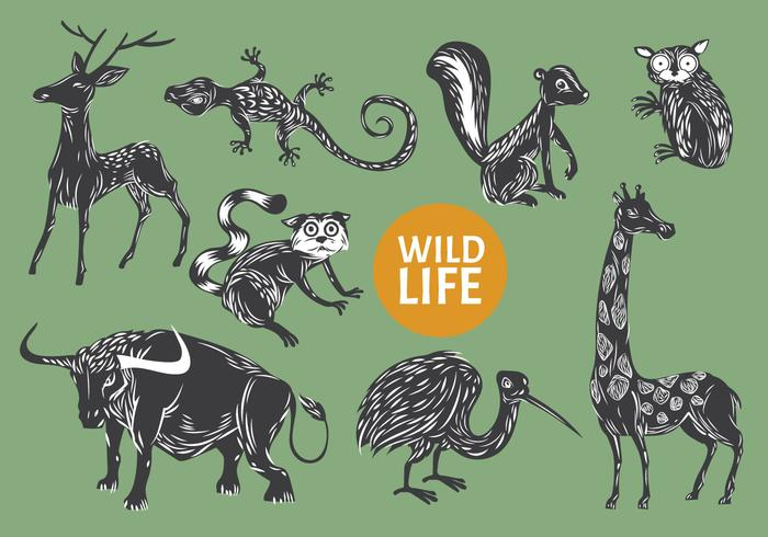 Collection of Gravure Style Illustration Animal Wild Life vector