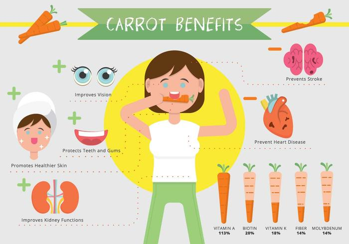 Carrot Benefits Infographic Vector