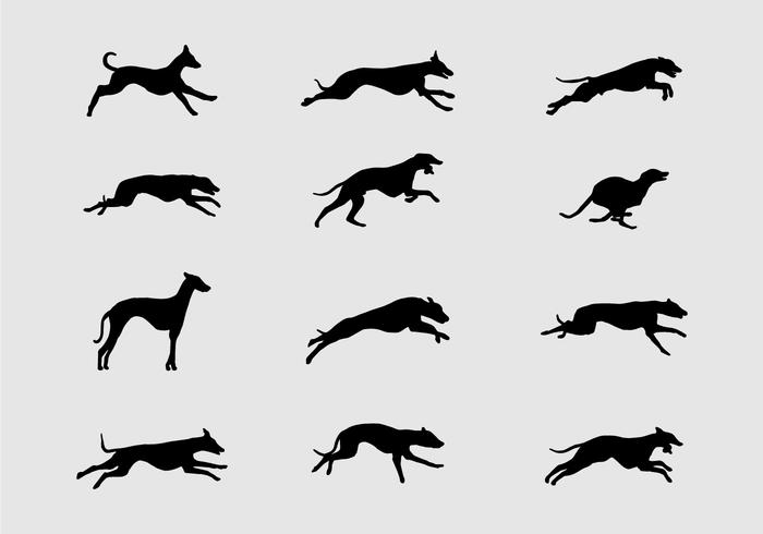 Whippet Silhouette