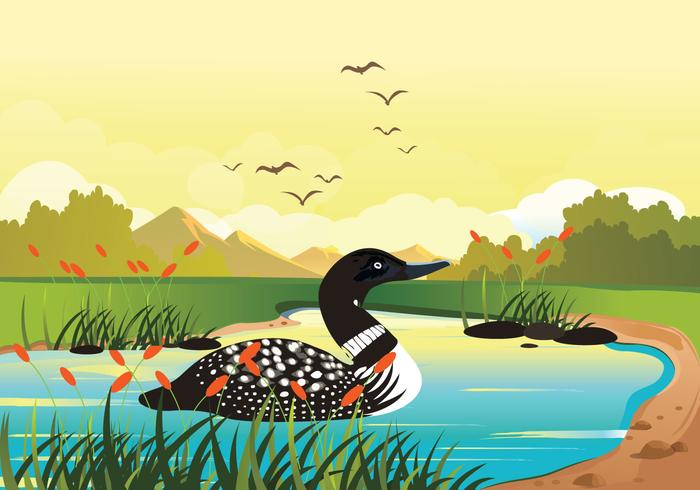 Loon Swimming In Lake Vector Background Illustration