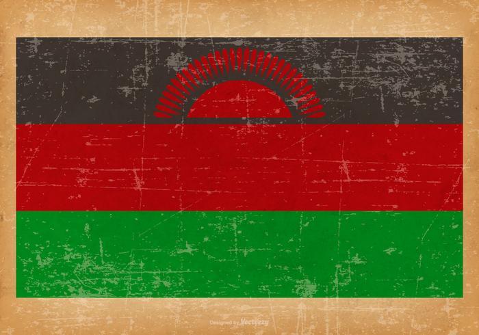 Bandeira do grunge de Malawai vetor