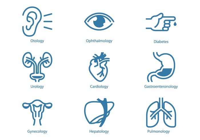 Urology and Internal Organ Icon