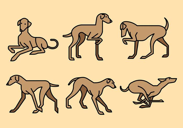 Whippet Vector Icons