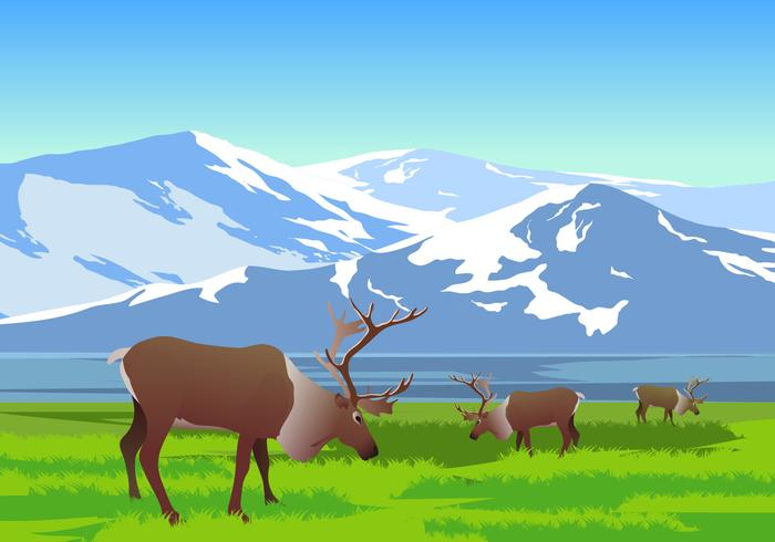 Mountain Landscape With Caribou