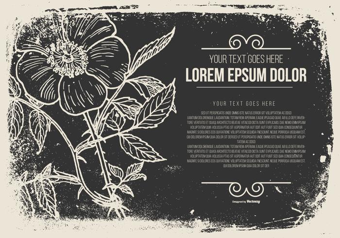 Grunge Flower Illustration with Space for Text