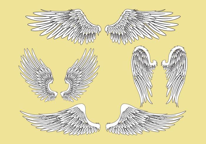 Ilustración vectorial abstracto conjunto de alas