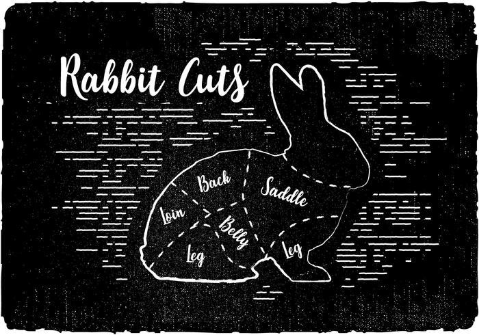 Free Rabbit Cuts Vector Background