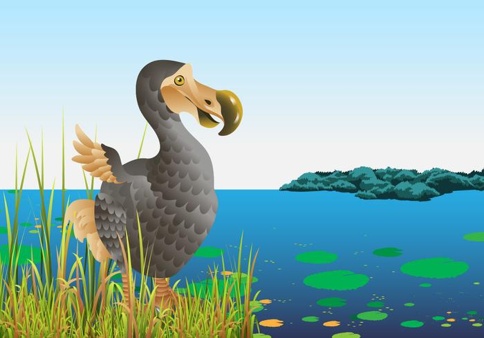 Dodo Bird In Nature