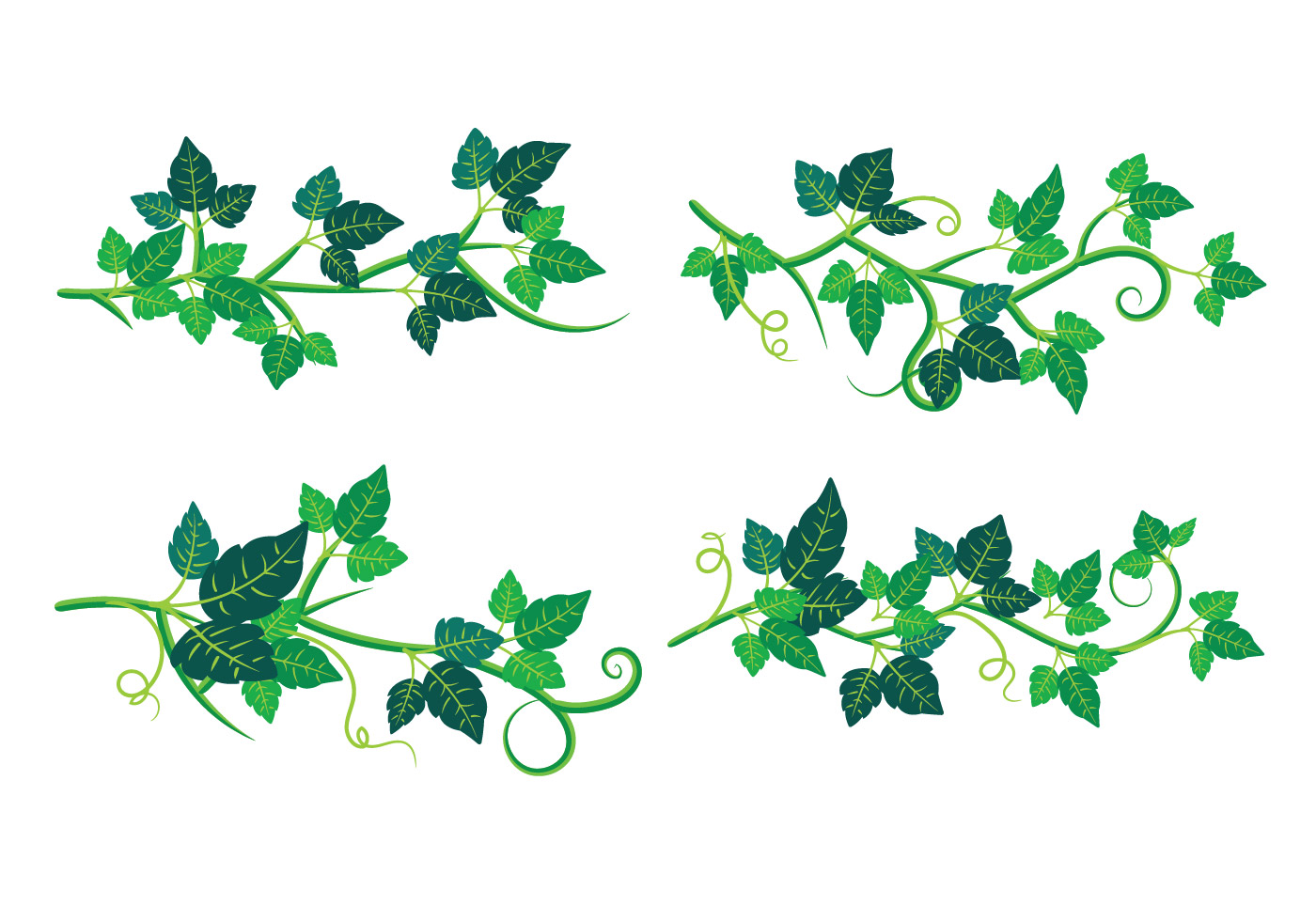 Set of Poison Ivy Plant - Download Free Vector Art, Stock ...