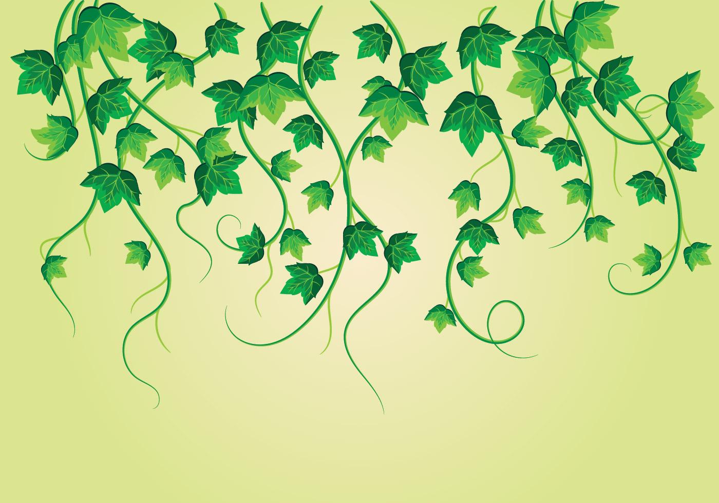 Climbing Plant Free Vector Art - (7816 Free Downloads)