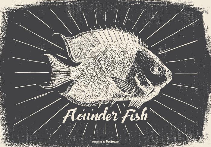 Vintage Style Flounder Illustration