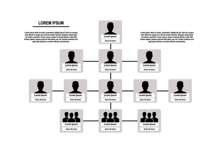 Free Organization Chart Vector