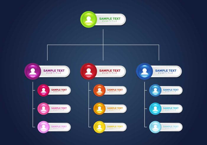 Org Chart Infographic Vector