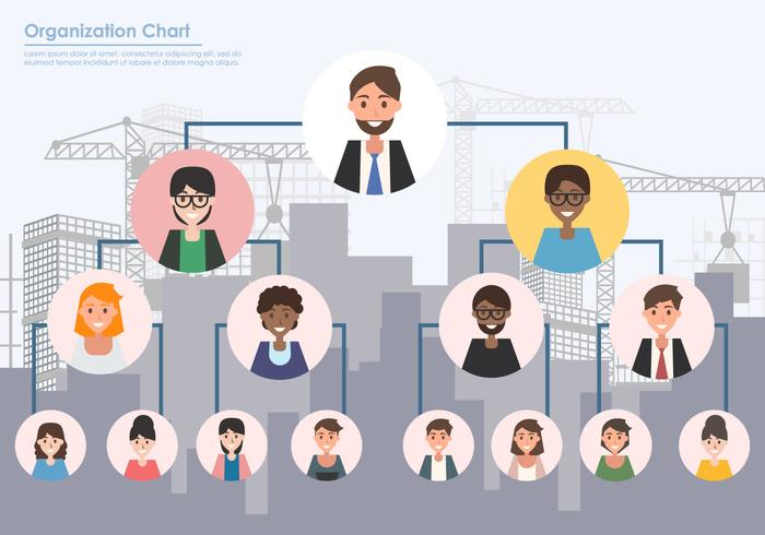 Organization Chart Graphic