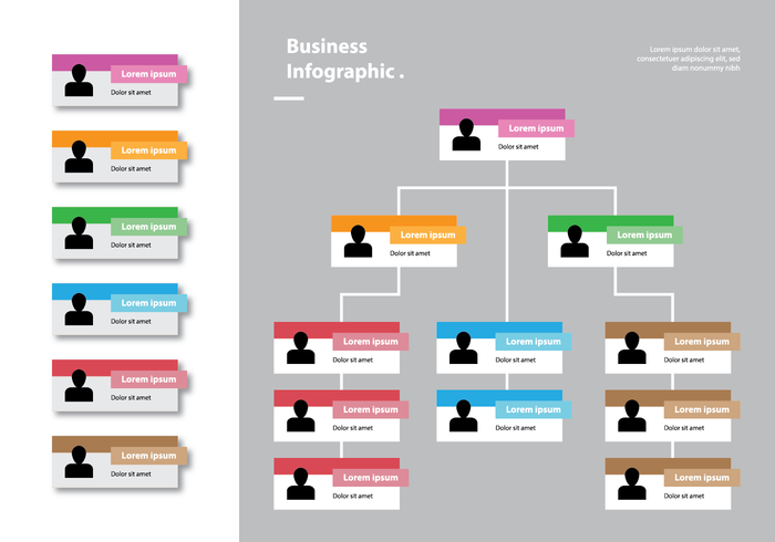 Color Card Organizational Chart Infographic