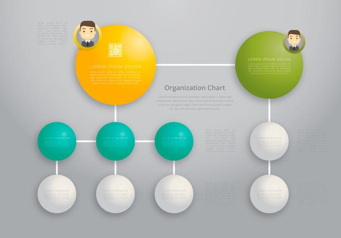 Organisatie Chart, Business Structure