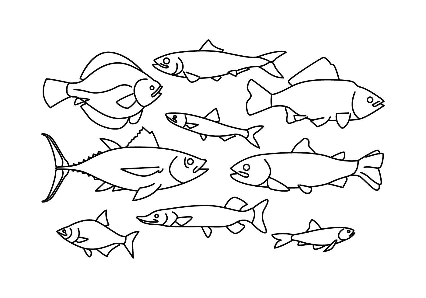 fish free vector art 6892 free downloads