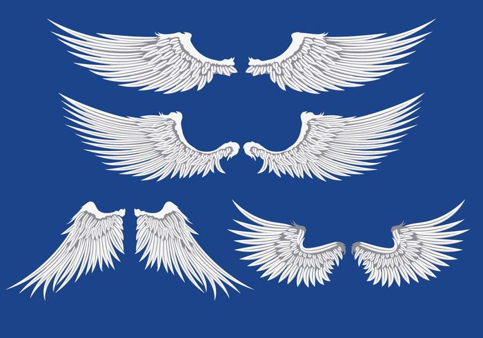 Ilustración de las alas blancas vector