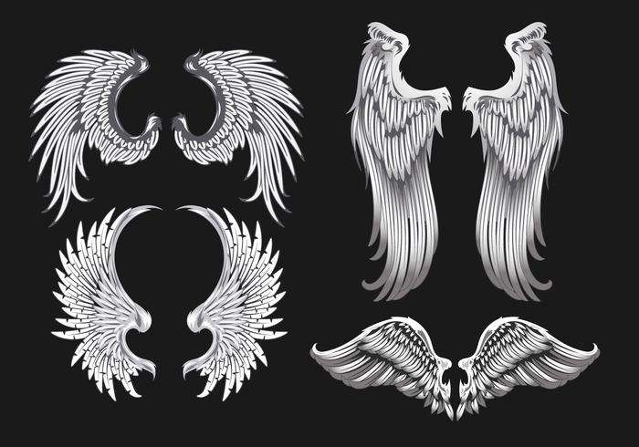 Illustration des ailes blanches