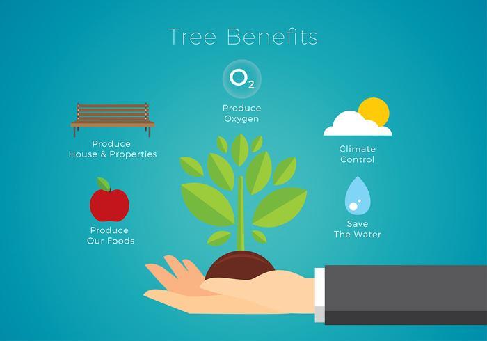 Tree Benefits Free Vector