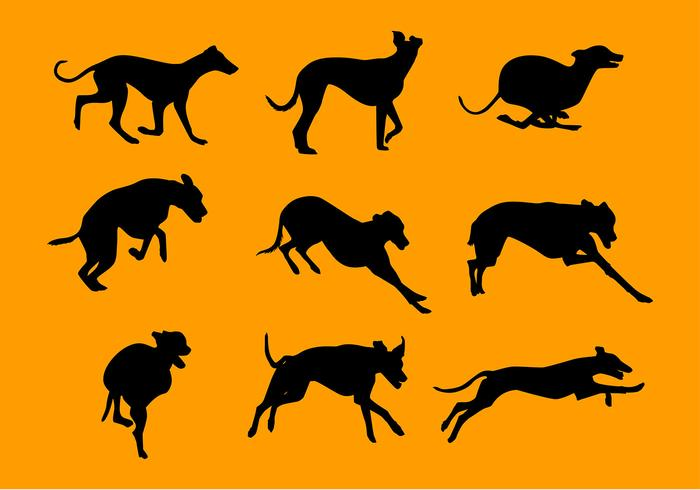 Whippet Silhouette Set Free Vector