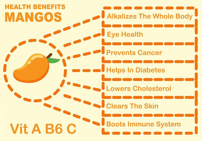 Frutti di mango benefici infografica
