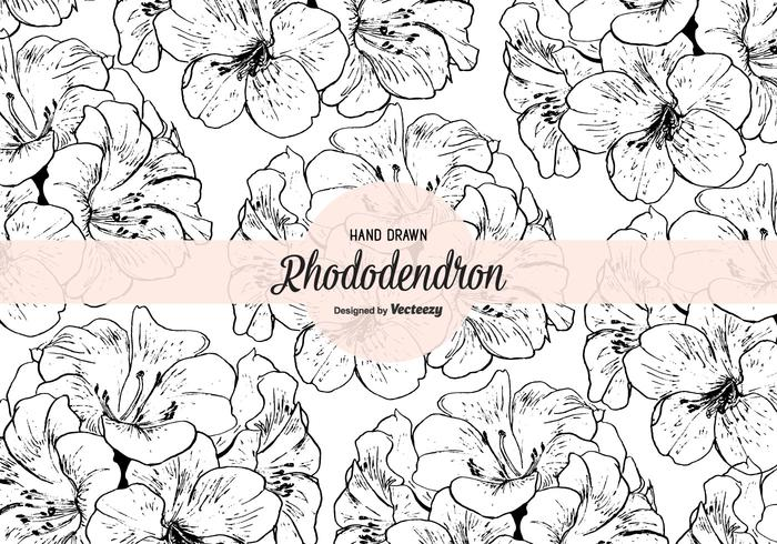 Hand Drawn Rhododendron Vector Seamless Pattern