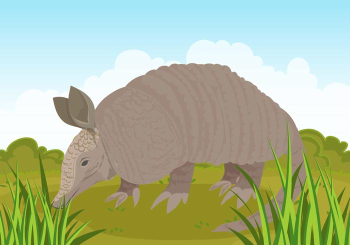 Armadilo Forest Illustration