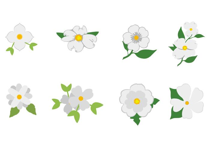 Free White Dogwood Icon Vector