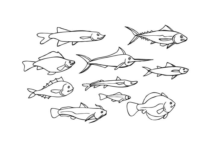 Free Fish Sketch Icon Vector
