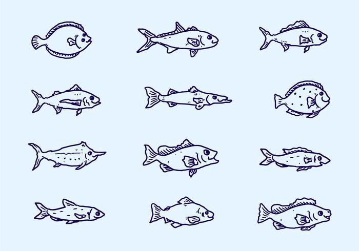 Sketch Fish Collection Vektor
