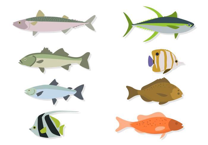 Flat Sea Animal Vectors