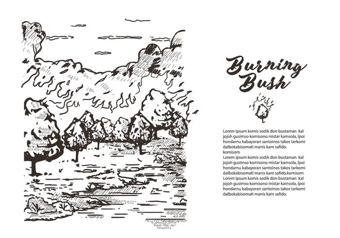 Lithografie Burning Bush Boekverhaal Vectorillustratie