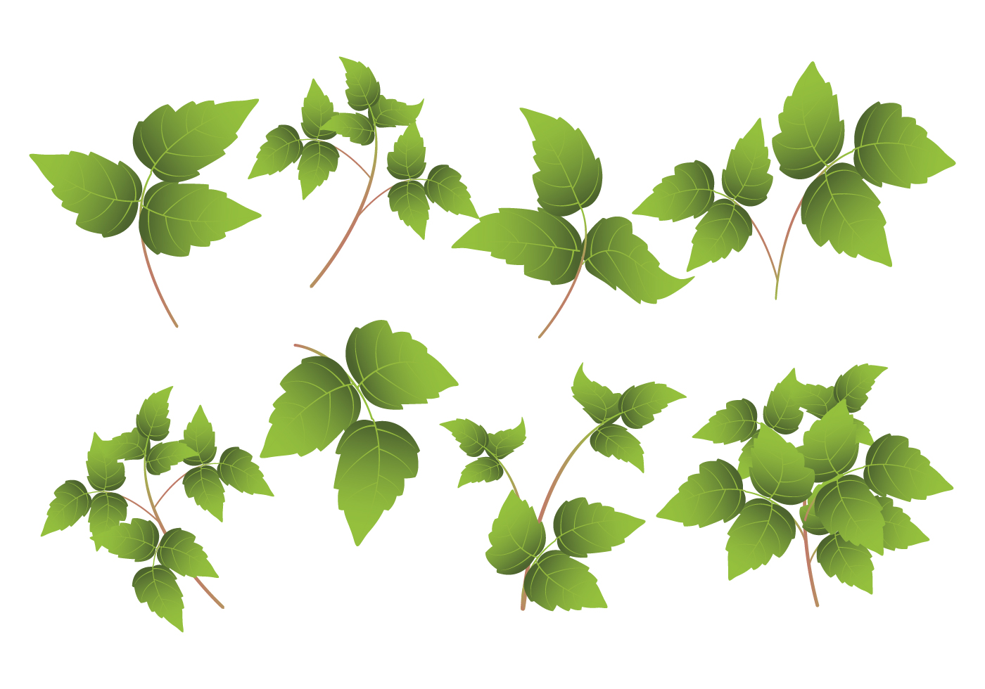 Poison Ivy Leaf - Download Free Vector Art, Stock Graphics ...