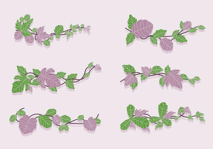 Green and Purple Poison Ivy Vine Vector Illustration