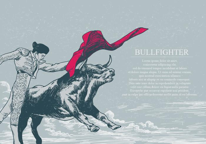 Hand Drawn Bull Fighter Vector