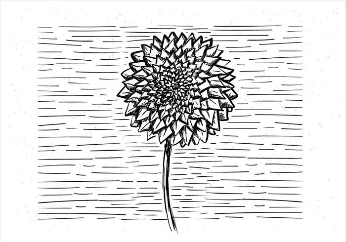 Free Hand Drawn Vector Flower