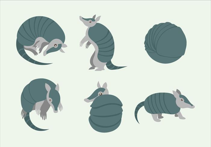 Armadillo Character Pose Vector  Flat Illustration