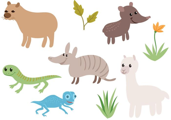 Vecteurs d'animaux sud-américains gratuits